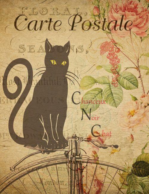 postcard vintage card