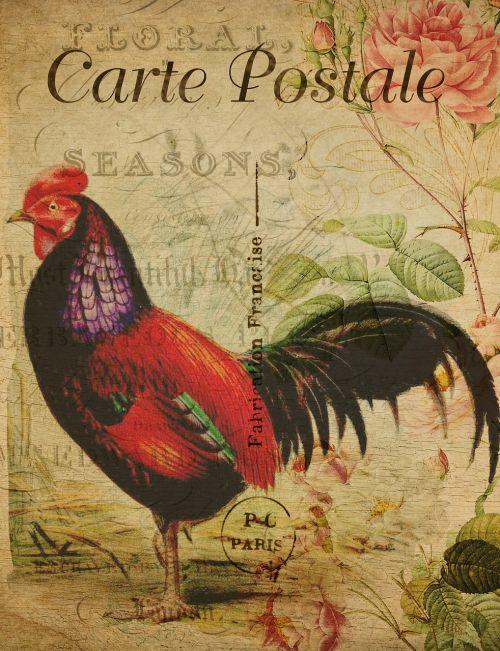 postcard vintage hen