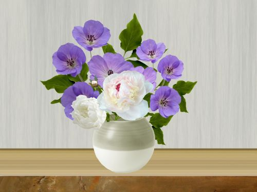 pot flowers flowers in pots
