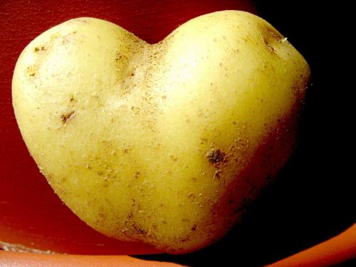 potato heart vegetables