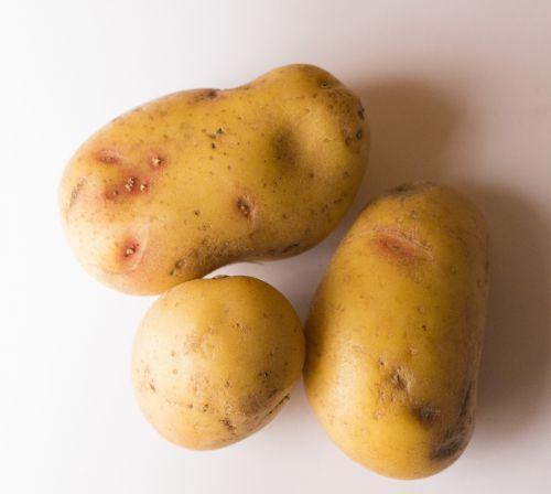 potato potatoes food