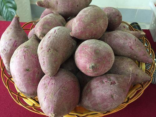 potato lang binh tan