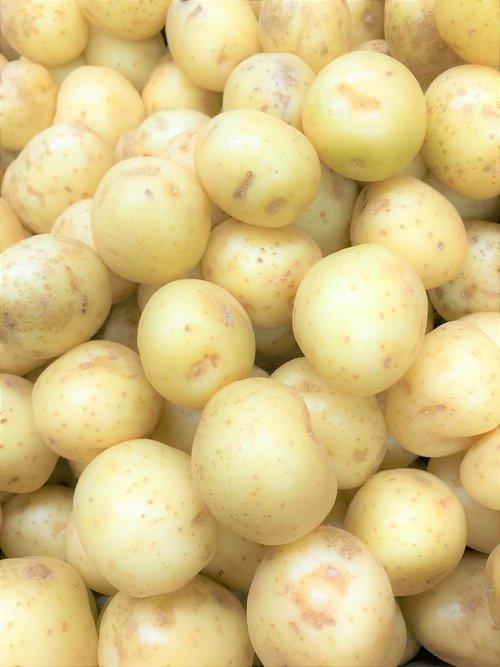 potato  farm  mash