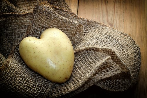potato  heart  fabric