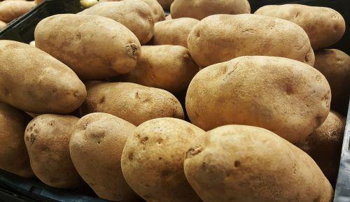 potatoes tubers russet