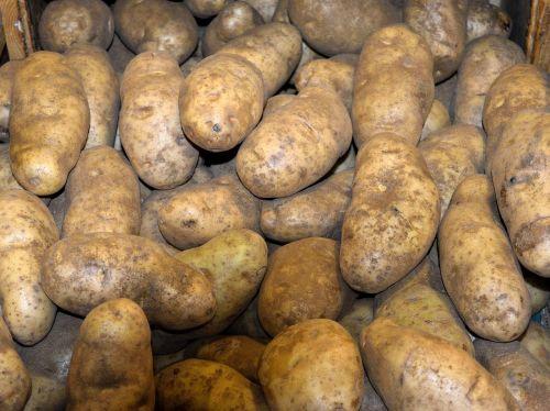 potatoes for sale market