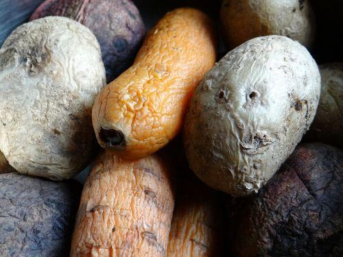 potatoes carrot beet