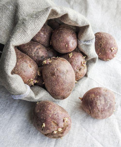 potatoes bag sack