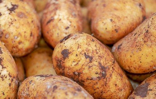 potatoes  vegetables  erdfrucht