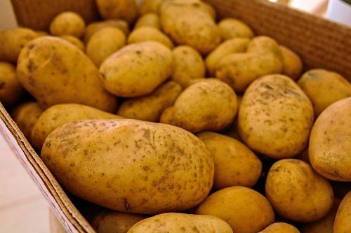 potatoes vegetables food