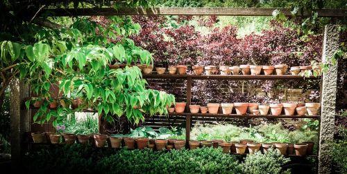 pots garden shelf