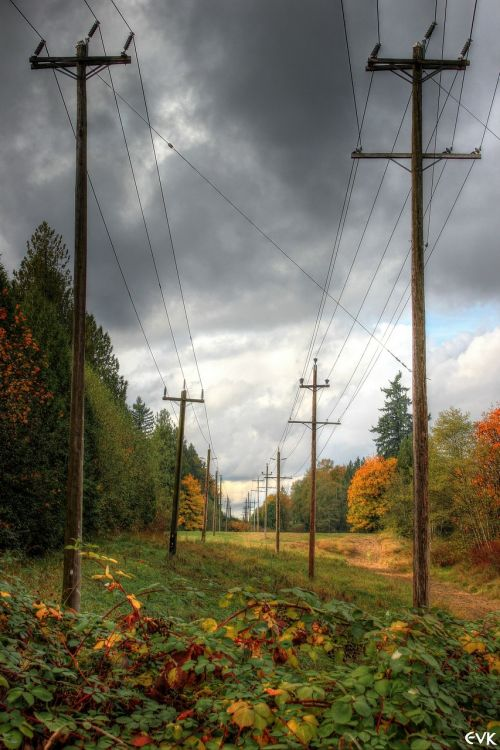 power lines electrical la