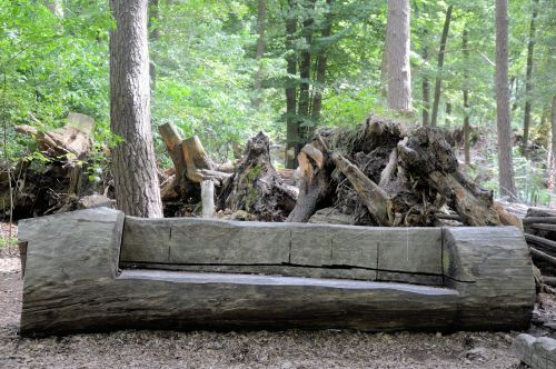Prehistoric Canoe
