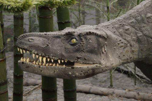 prehistoric times urtier dangerous