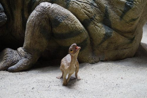 prehistoric times urtier museum