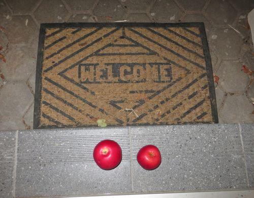 Surprise At The Door