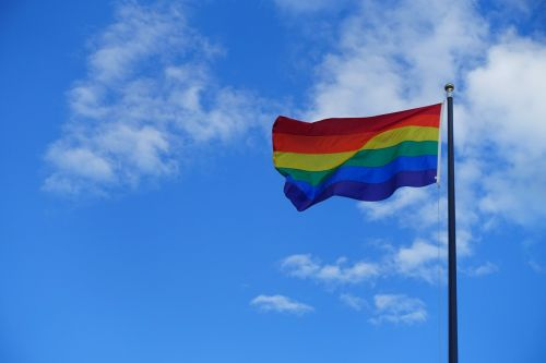 pride gay pride flag