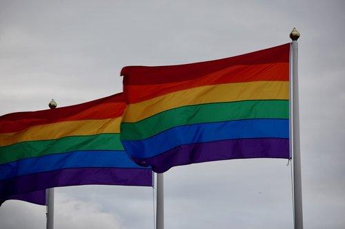 pride  flag  queer