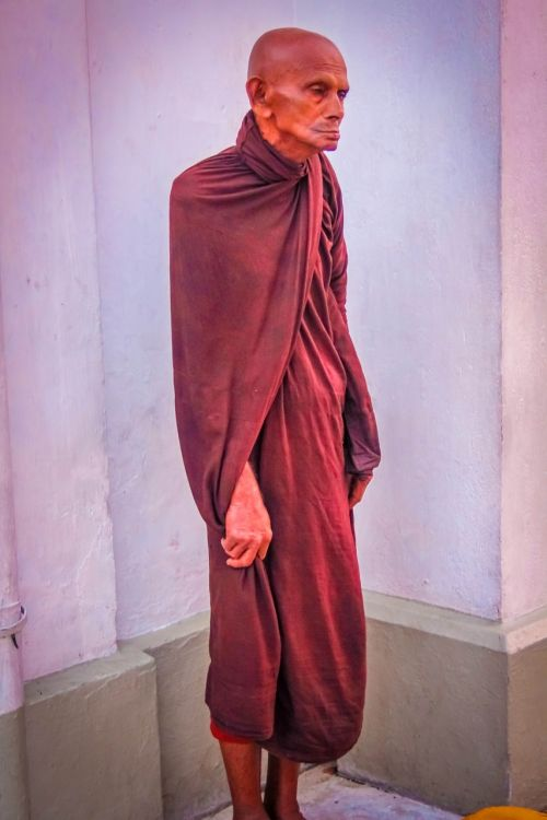 priest thero man