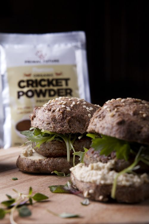 primal future cricket powder cricket flour