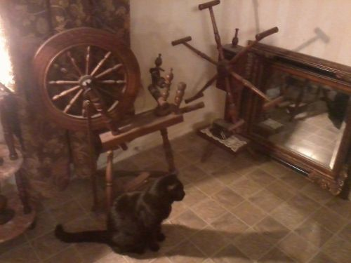 Primitive Living Room With Cat
