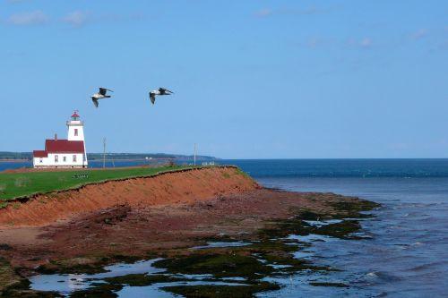 prince edward island canada lighthouse