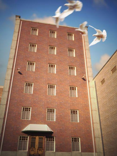 prison jail freedom