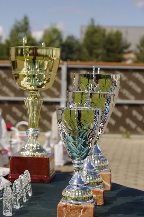 prize competition trophy
