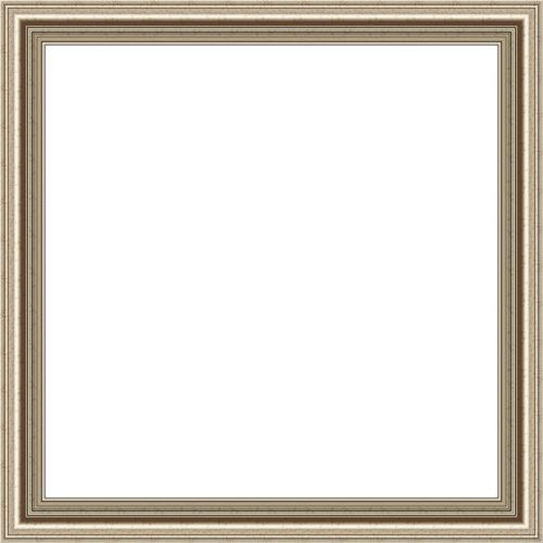 Professional Grey Frame