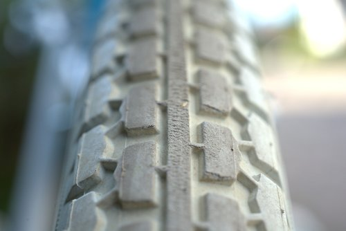 profile  mature  wheel