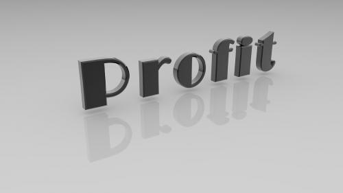 profit business reflection