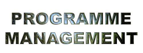 programme management business management
