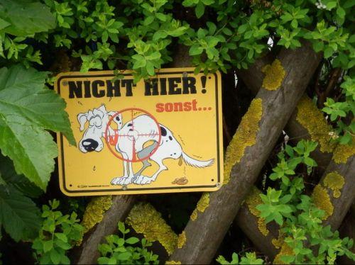 prohibitory dog ban dog