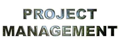 project management business project manager