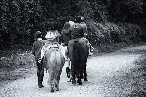 Equestrian Drive