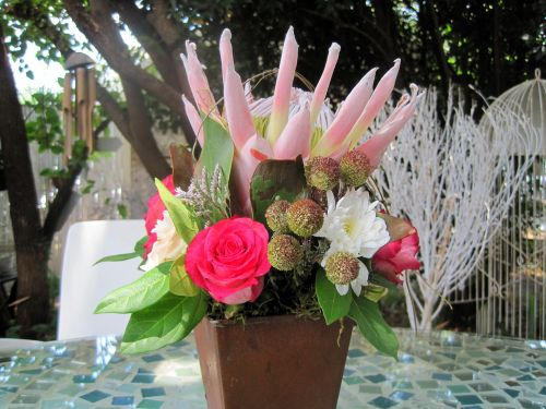 Protea And Flowers In Pot