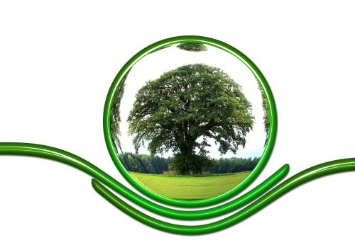 protect ecology protection