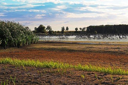 protected landscape area  hatchery  nature