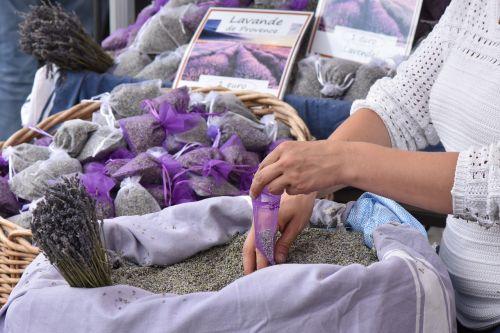 provence lavender hands