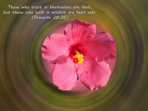 Proverbs Wallpapers 2