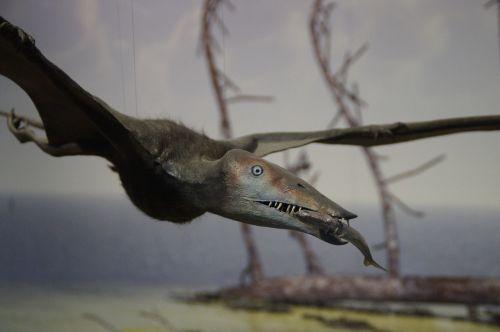pterosaur fishing prey