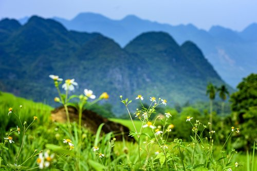 pu luong nature reserve  thanhhoa province  agriculture