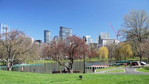 public garden boston park