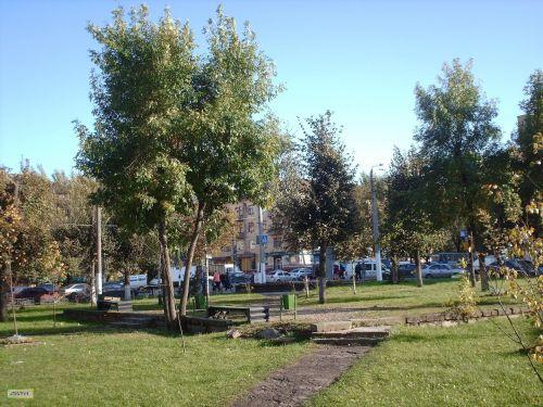 Public Garden In Smolensk