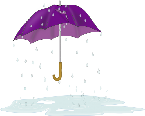 puddle umbrella drips