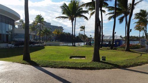 puerto rico tropical island