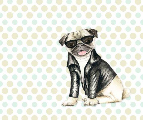 Pug Dog Cute Illustration