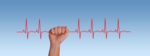 pulse  frequency  heartbeat