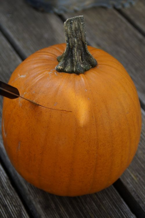 pumpkin halloween autumn