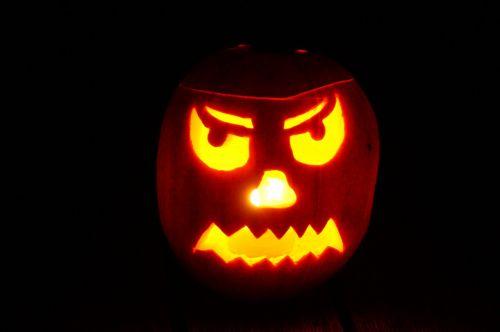 pumpkin halloween autumn